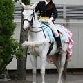 写真: 川崎競馬の誘導馬05月開催 誕生日記念レースVer-11-large