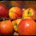 Photos: P2650764