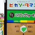 Photos: ぐりんぱ-Grinpa-:ピカソのタマゴ:パイピングウォーキング