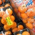 写真: 広島みかん めしーませー 初恋の味ぃ~~♪
