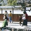 Photos: 33-岡山 倉敷市 ビデオ-19990300-002