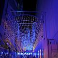 光の回廊。
