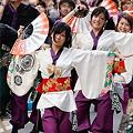 写真: 早稲田大学よさこいチーム東京花火_03 - 良い世さ来い2010 新横黒船祭