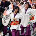 Photos: 早稲田大学よさこいチーム東京花火_03 - 良い世さ来い2010 新横黒船祭