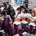 Photos: 早稲田大学よさこいチーム東京花火_05 - 良い世さ来い2010 新横黒船祭