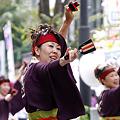 多摩っこ_03 - 良い世さ来い2010 新横黒船祭