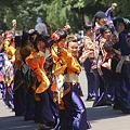 乱舞姫 - 第5回よさこい祭りin光が丘公園 2011