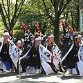 かつみ(鳴子会)_02 -  「彩夏祭」 関八州よさこいフェスタ 2011