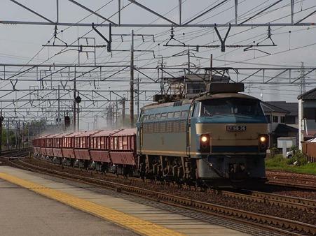 DSCN3110