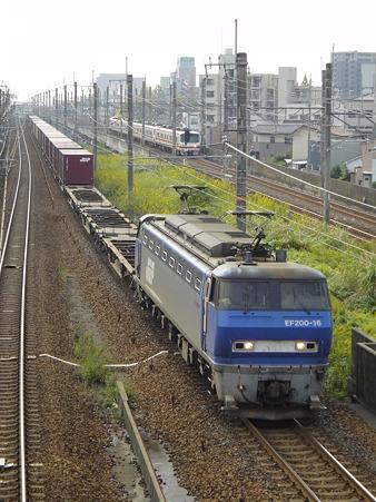 DSC02554