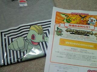 http://art34.photozou.jp/pub/203/708203/photo/52988703_org.v1352663401.jpg