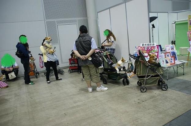 Photos: DSC08391
