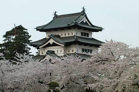h弘前城の桜