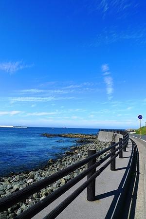 海沿いの歩道を散策