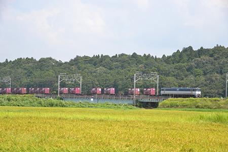 EF65 103? @物井駅-佐倉駅[8/23]