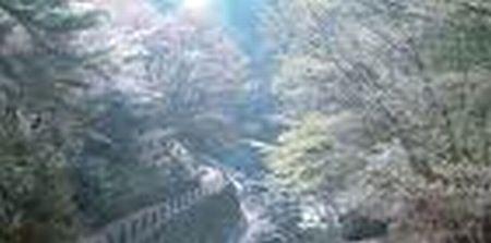 1992年2月10日・母を連れて行った、美霞洞温泉にて