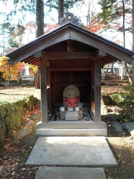 世田谷線:宮の坂駅界隈_豪徳寺-12紅葉