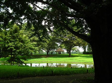 昭和記念公園 142