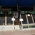 Photos: katurahama110311013