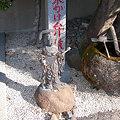 Photos: 07実相院弁財天003