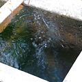 写真: 会津大塩の炭酸泉