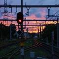 Photos: 誉田駅の夕暮れ