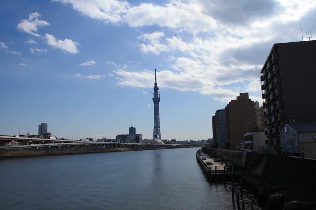 20110310_121