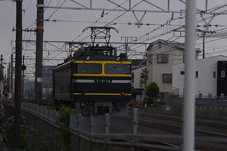 IMGP1282