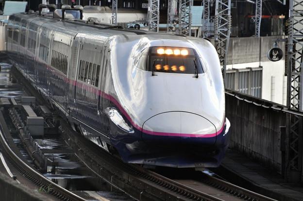 東京 新幹線 仙台