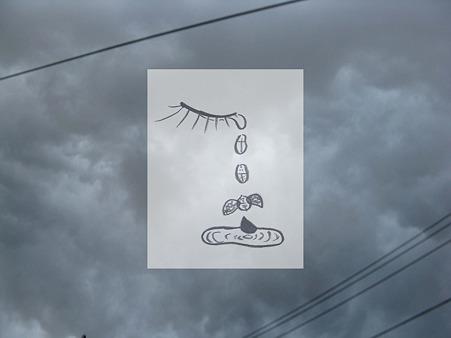 空で泣いた涙はテントウ虫になって飛んでいく