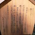 Photos: 2010年・鎌倉・成就院・02