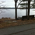 Photos: A Bench by the Water