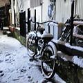 写真: 110214 雪の極楽寺坂自転車