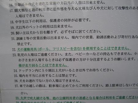 IMG_5345