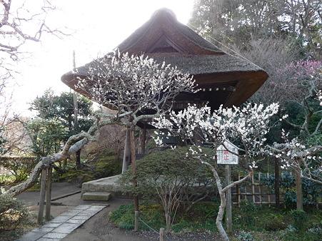 110225-東慶寺  (38)