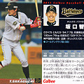 写真: プロ野球チップス2011No.103坂口智隆(オリックスバファローズ)