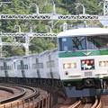 185系踊り子号 国鉄色2