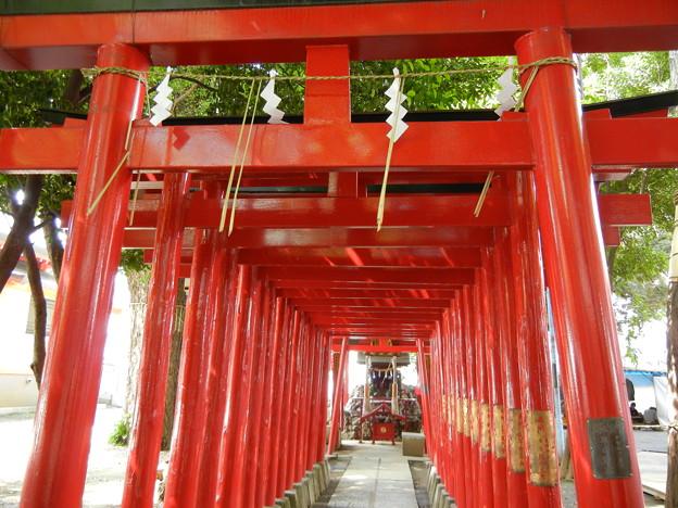 境内社の稲荷神社の鳥居-花園神社 (新宿区新宿) - 写真共有 ...