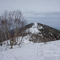 写真: 飯綱山頂へ