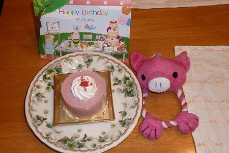 ラン、3歳の誕生日