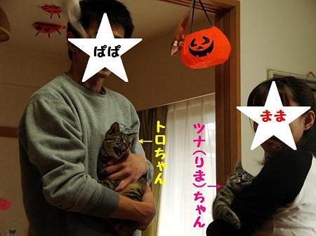 りまちゃん家族写真