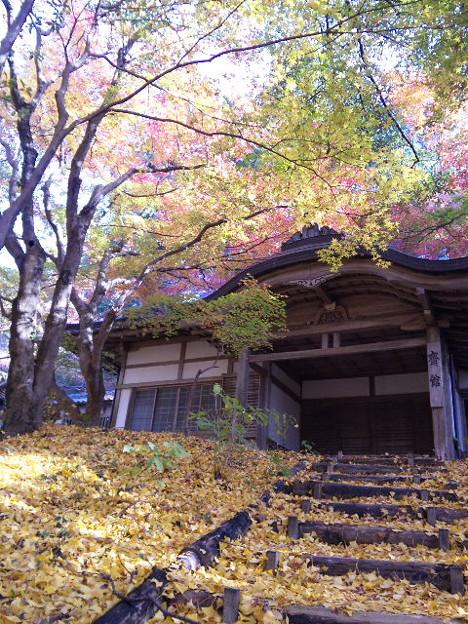 写真: 福岡県の竈門神社の紅葉
