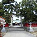 写真: 唐津神社なう