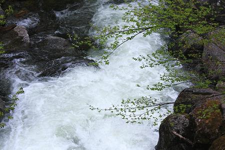 2010.05.22 白布温泉 渓流