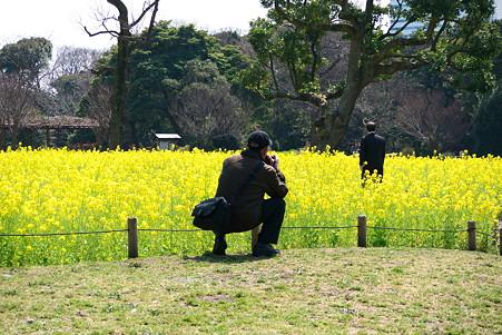2011.03.25 浜離宮 カメラ