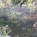 写真: 出口池
