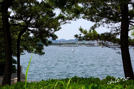 八景島-238