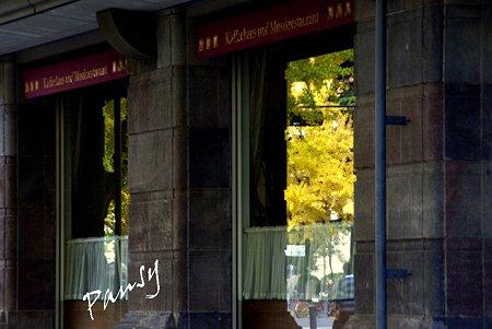 銀杏 yellow の街角・・1