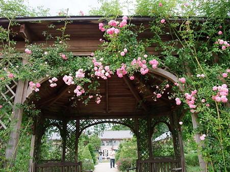2010年06月12日熊山英国庭園10