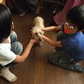 Photos: ジオと子供達